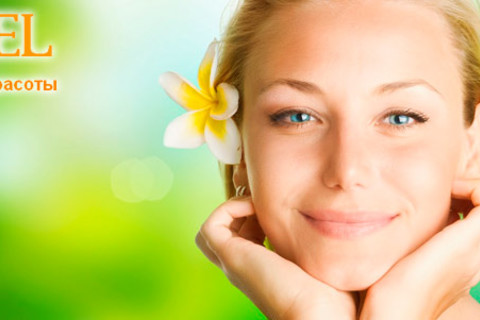 Ультразвуковая, механическая или комплексная чистка лица + пилинг в студии красоты EL. 1 или 3 сеанса. Скидка до 81%