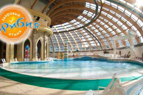 Массаж на выбор + 3 часа посещения аквапарка + банный комплекс. Незабываемый релакс в центре «Карибия»! Скидка до 67%