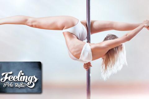 8 или 12 занятий танцами для взрослых и детей в студии танца и акробатики на пилоне Feelings. Скидка до 74% от КупиКупон